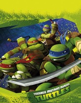 Teenage Mutant Ninja Turtles themed party supplies and decorations.