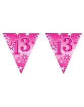 Pink Sparkle Age 13 Birthday Flag Banner