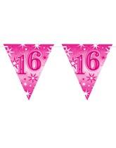 Pink Sparkle Age 16 Birthday Flag Banner
