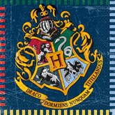 Harry Potter Luncheon Napkins 16pk