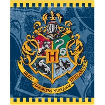 8 Harry Potter Loot Party Bags