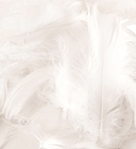 Eleganza White Mixed Feathers 50g