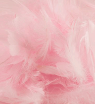 Eleganza Light Pink Mixed Feathers 50g