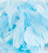 Eleganza Light Blue Mixed Feathers 50g