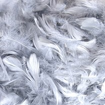 Eleganza Silver Mixed Feathers 50g