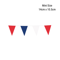 Mini Red, White & Blue Flag Bunting 3M