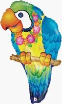 "Tropical Parrot 29"" Foil Balloon"