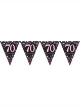 Pink Celebration Happy 70th Birthday Flag Banner