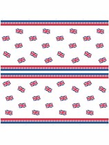 Union Jack Plastic Picnic Sheet 1.2m