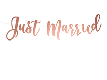 Rose Gold Just Married Script Banner 0.8M