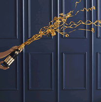 Champagne Bottle Confetti Cannon 33cm