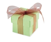 Apple Favour Boxes 10pk