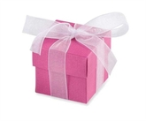 Cerise Favour Boxes 10pk