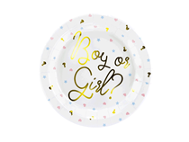 Gender Reveal Boy Or Girl 23cm Paper Plates