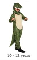 Children's Dinosaur Fancy Dress Costume 10 - 12 yrs