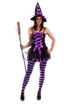 Adult Purple Witch Fancy Dress Costume