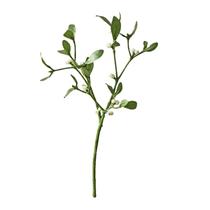 """Mistletoe 15"""" Short Stem"""
