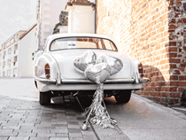 Hearts, Tassels & Cans Wedding Car Decoration Kit 9pce