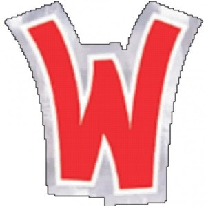 Letter W Balloon Stickers 48pk