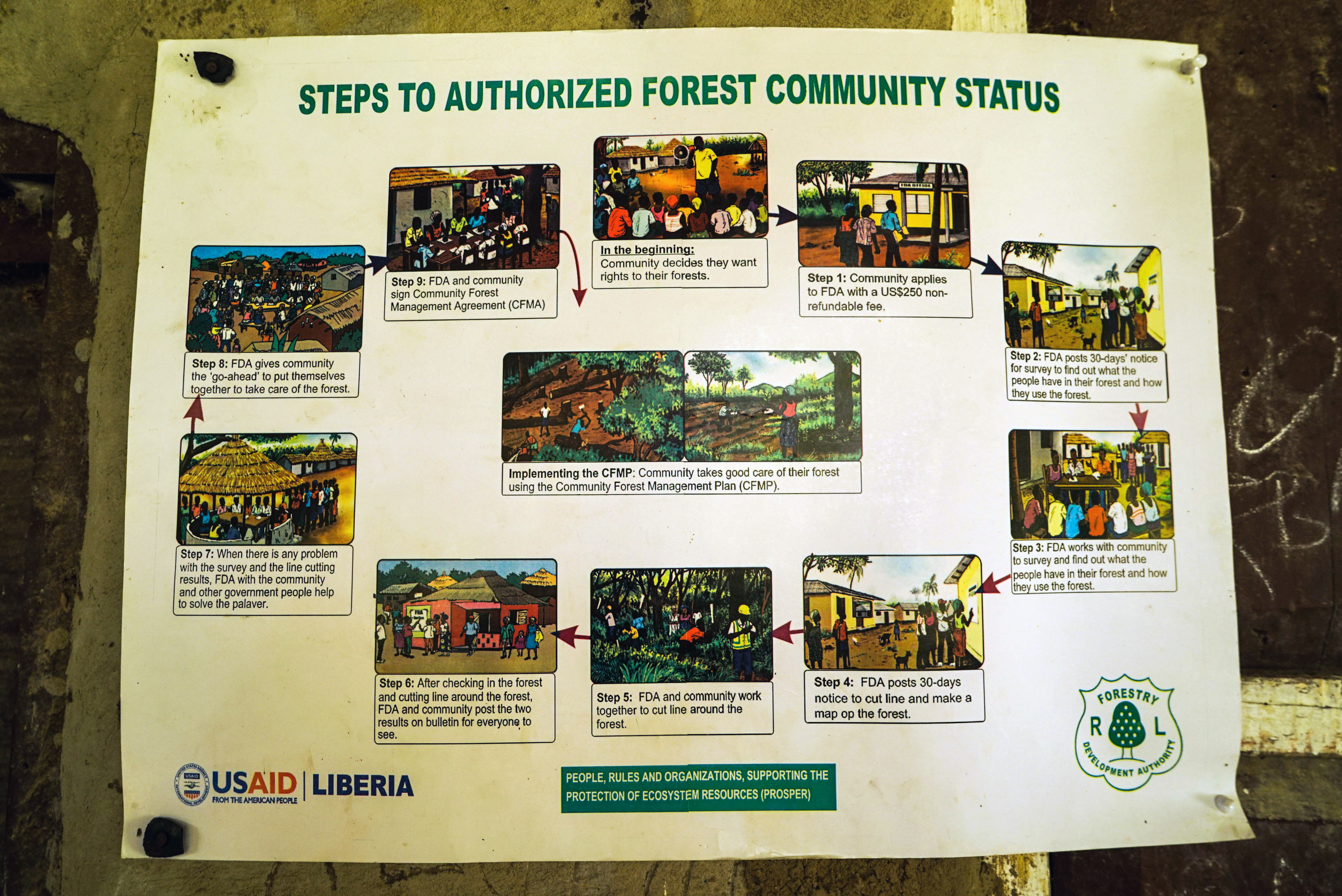Steps to Authorized Forest Community Status