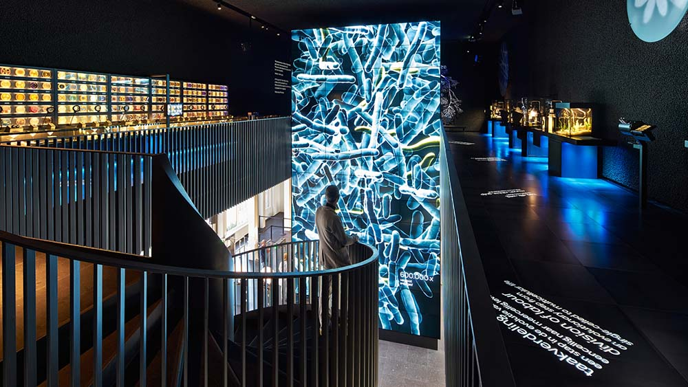Micropia is one of the hidden culture gems in Amsterdam