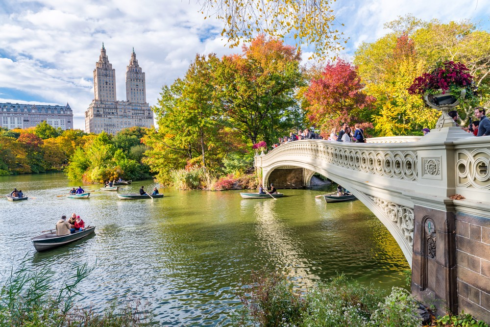 Central Park in the fall 24 hours in New York
