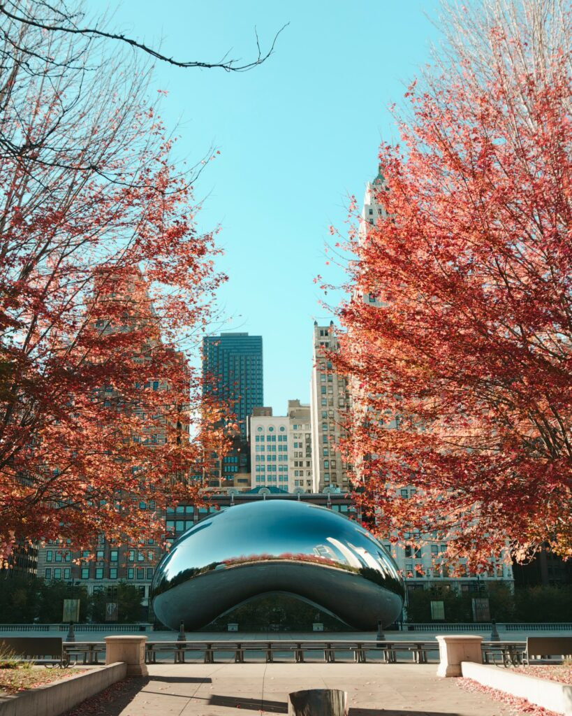 The Chicago Cloud Gate Sculpture between autumn trees