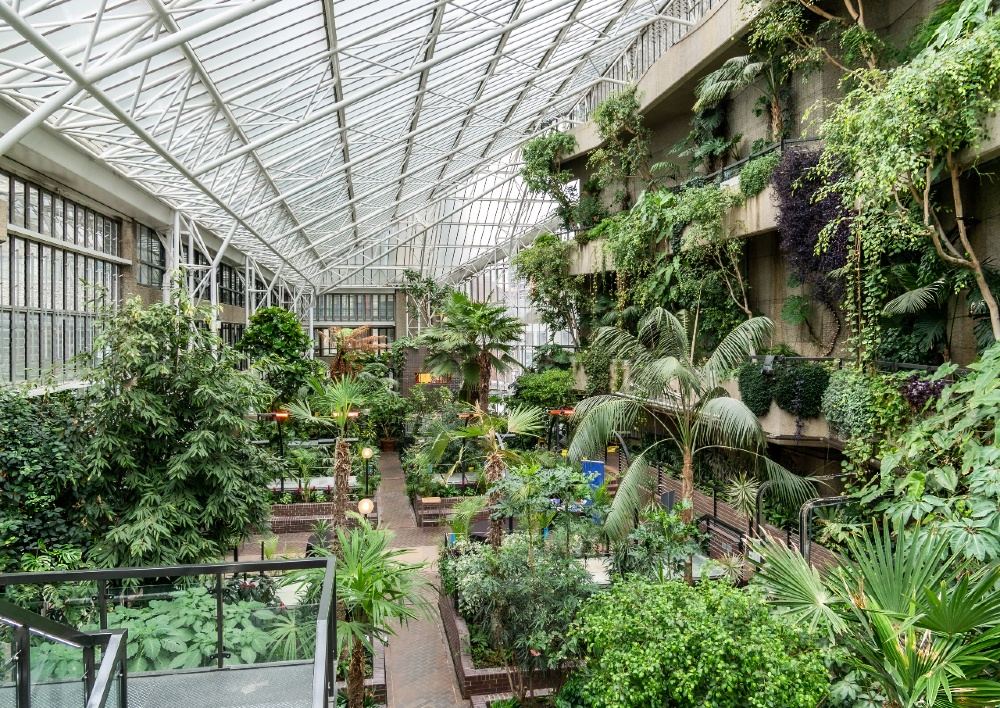 Greenhouse Conservatory garden inside Barbican center, with green and fresh tropical plants