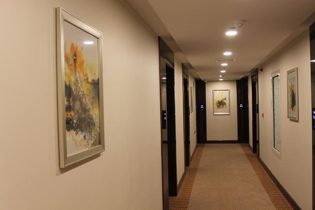 فندق فيلفيت-33 من 43 الصور
