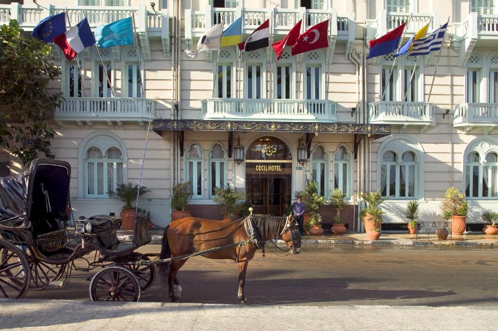 Steigenberger Cecil Hotel Alexandria-2 of 35 photos