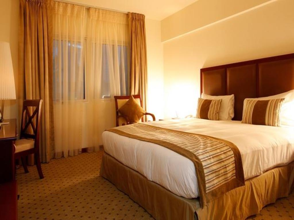 فندق قصر العين أبو ظبي-33 من 47 الصور