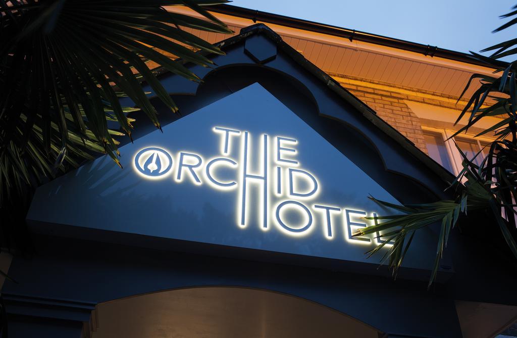 فندق ذا أوركيد-28 من 46 الصور