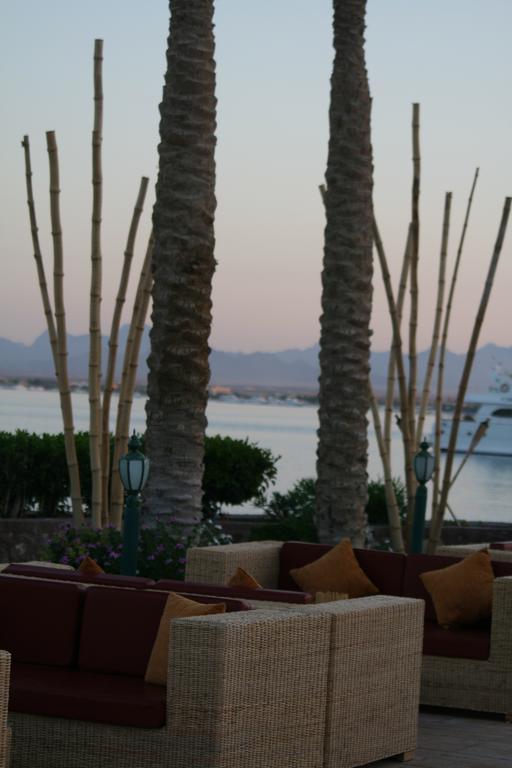 منتجع ماريوت الغردقة البحر الاحمر-31 من 35 الصور