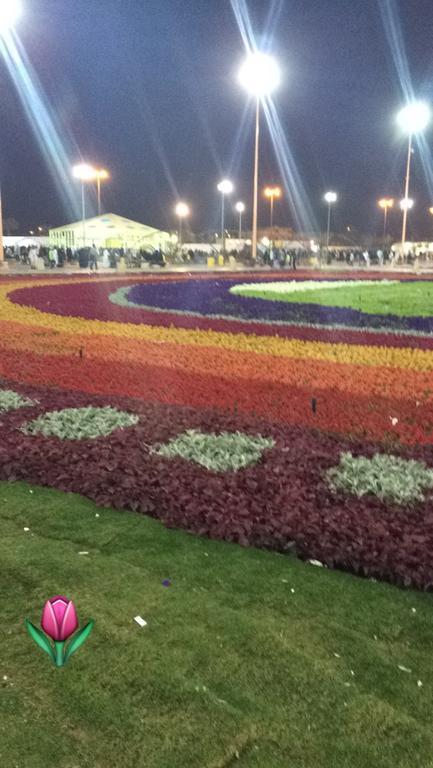 فندق هوليداي إن الرياض ازدهار-13 من 46 الصور