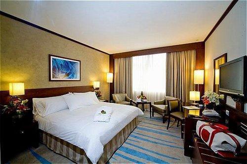 فندق هوليداي إن الرياض ازدهار-45 من 46 الصور