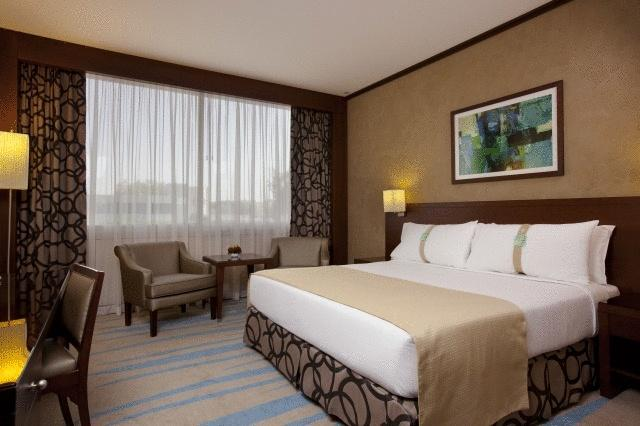 فندق هوليداي إن الرياض ازدهار-46 من 46 الصور