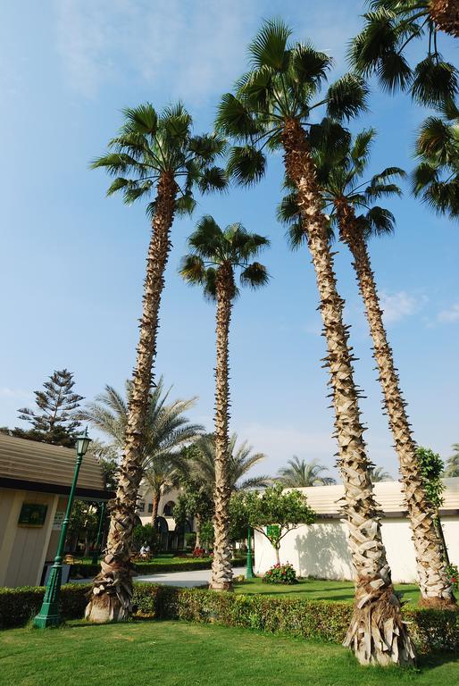 فندق الواحة-23 من 34 الصور