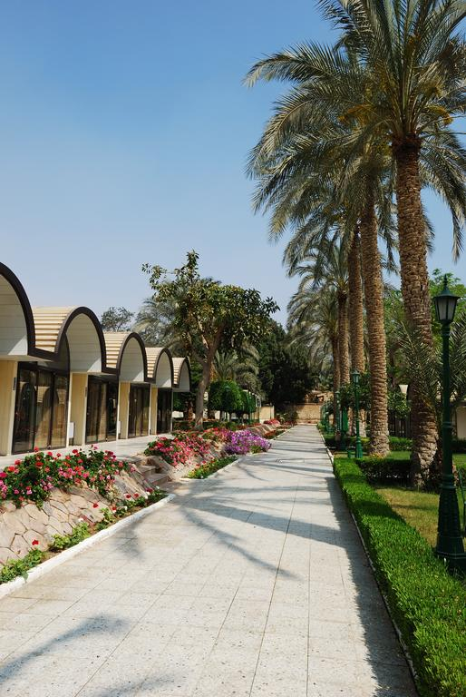 فندق الواحة-24 من 34 الصور