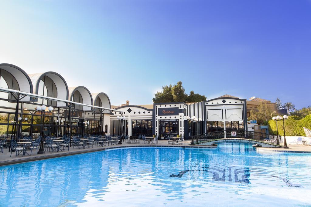 فندق الواحة-33 من 34 الصور