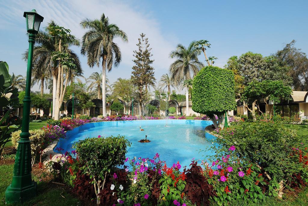 فندق الواحة-9 من 34 الصور