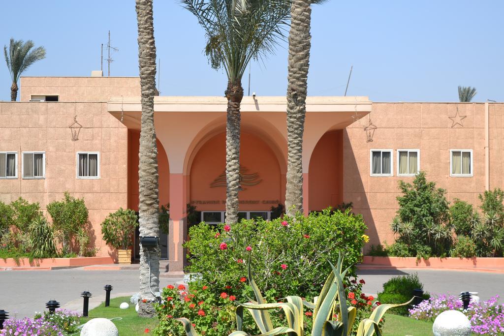 بيراميدز بارك ريزورت القاهرة - سابقا منتجع انتركونتيننتال بيراميدز بارك-1 من 44 الصور
