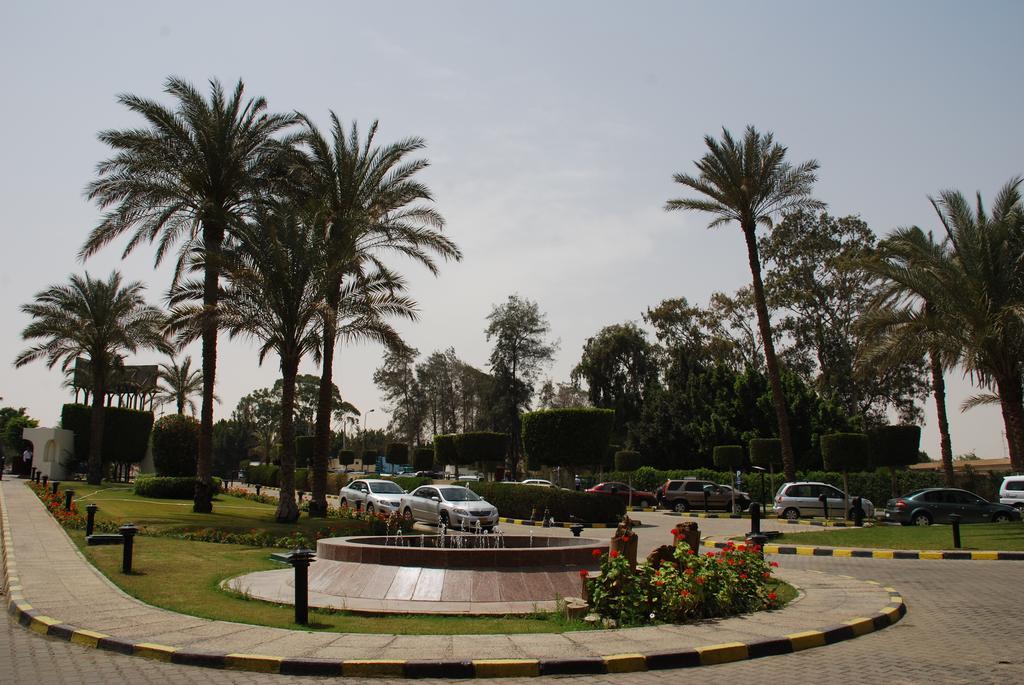 بيراميدز بارك ريزورت القاهرة - سابقا منتجع انتركونتيننتال بيراميدز بارك-23 من 44 الصور