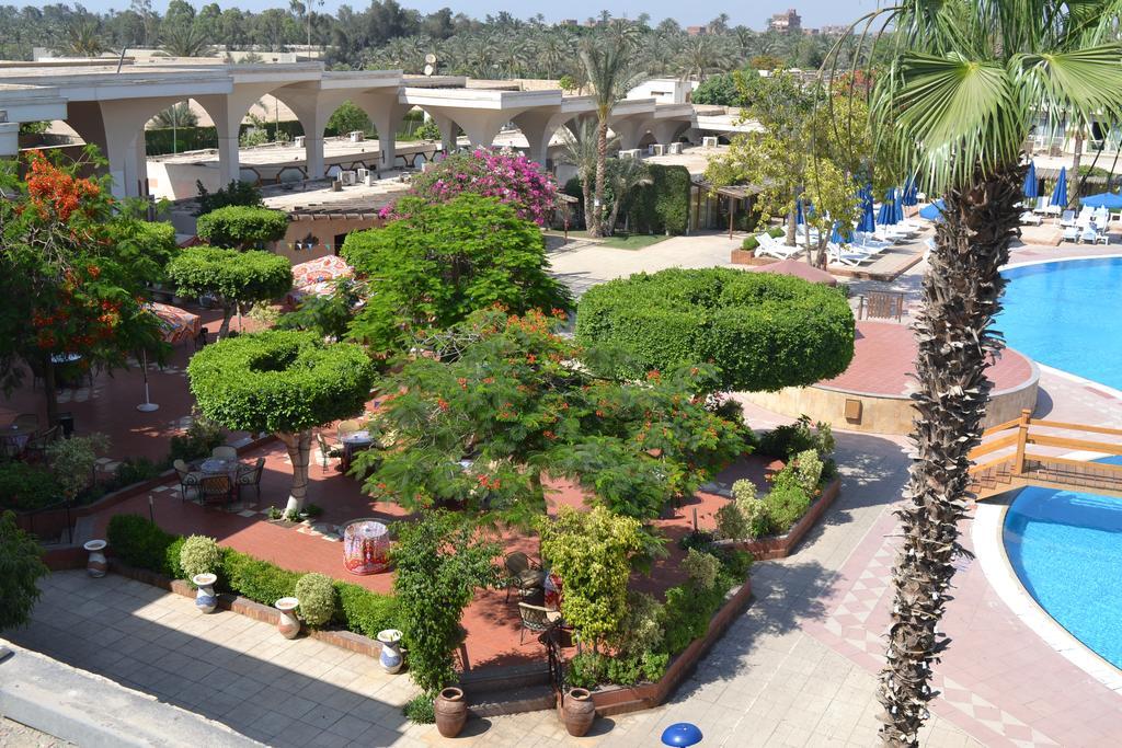 بيراميدز بارك ريزورت القاهرة - سابقا منتجع انتركونتيننتال بيراميدز بارك-4 من 44 الصور