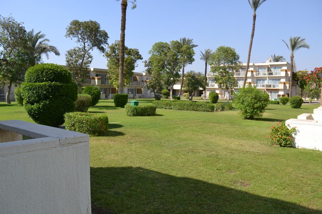بيراميدز بارك ريزورت القاهرة - سابقا منتجع انتركونتيننتال بيراميدز بارك-43 من 44 الصور