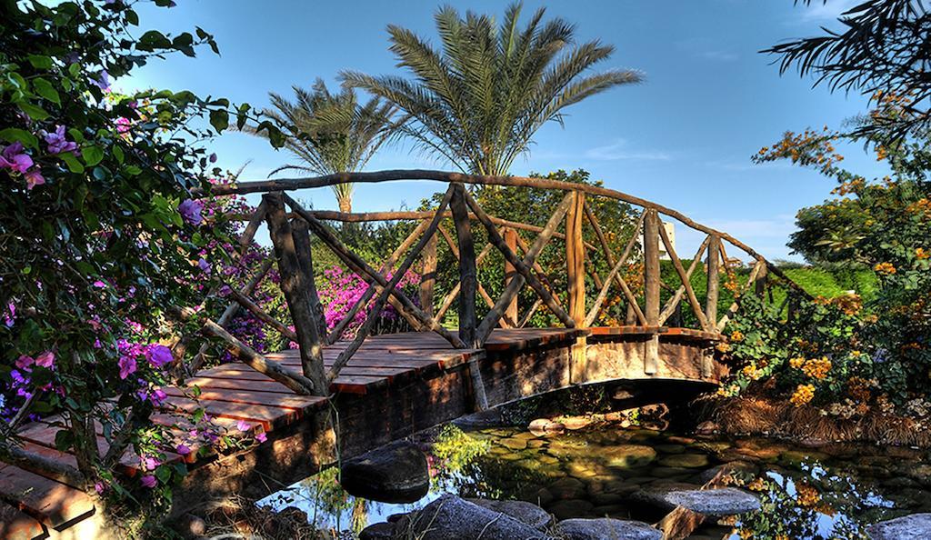 منتجع أورورا أوريانتال شرم الشيخ-38 من 40 الصور