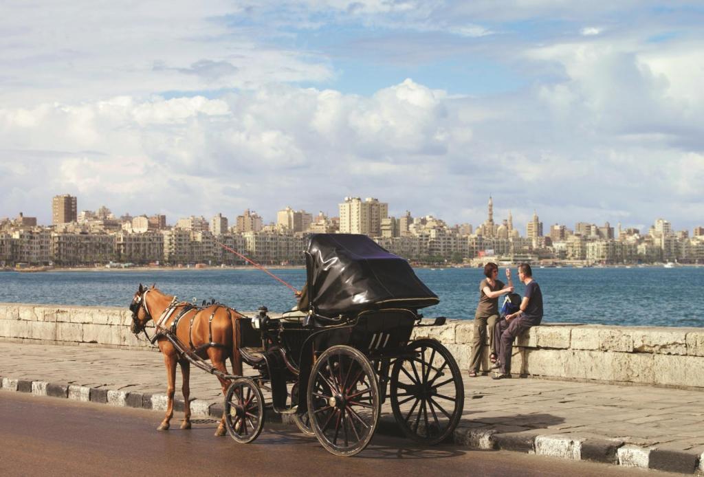 Four Seasons Hotel Alexandria At San Stefano-5 of 39 photos