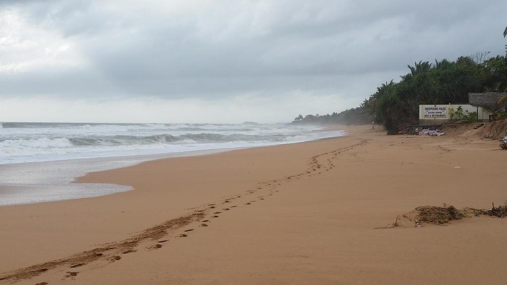 Centara Ceysands Resort & Spa Sri Lanka - Book Centara