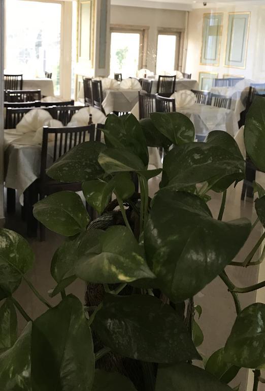 فندق رويال مارشال-39 من 44 الصور
