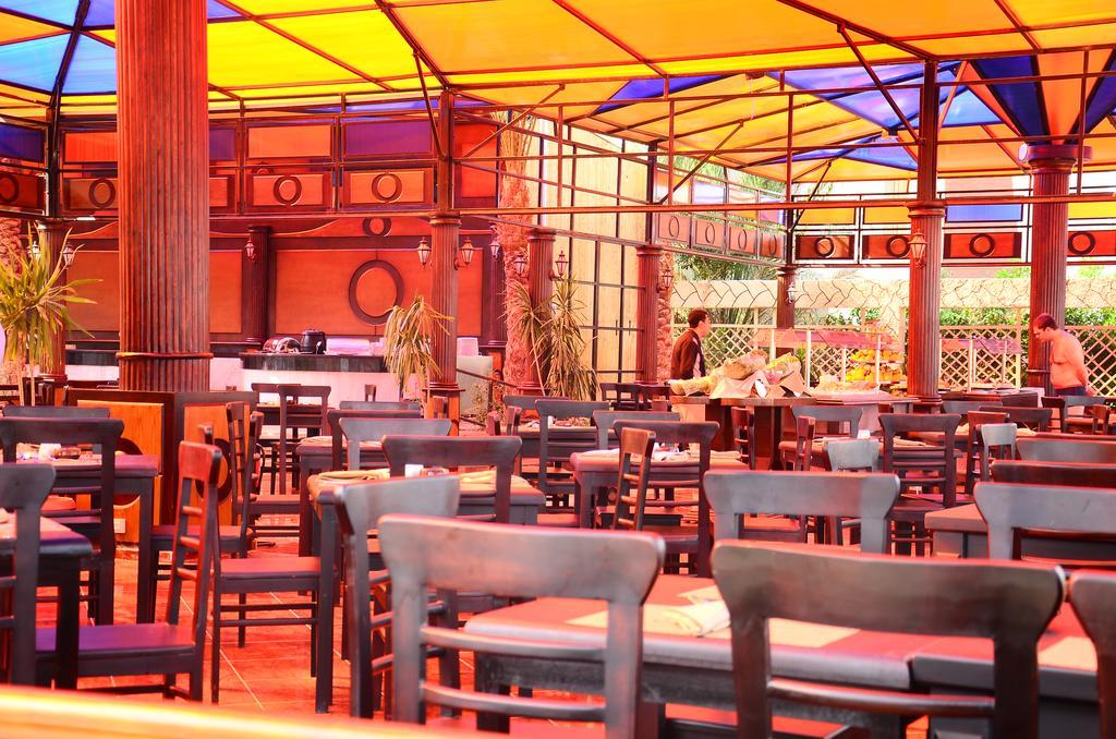 فندق إيه إم سى رويال-34 من 46 الصور