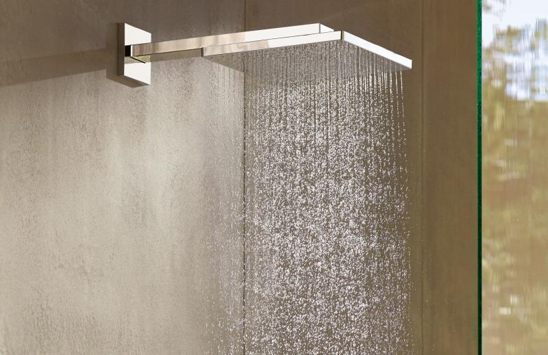 Raindance E 300 1jet med dusjbend 39 cm